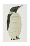 Menu in the Shape on an Emperor Penguin  for the Midwinter's Day Dinner  Cape Evans  22nd June 1912