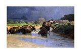 Elephants Bathing; Badende Elefanten  1908