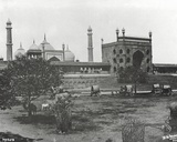 Jama Masjid Mosque  in the Red Fort  Delhi  Where the Garden Party Was Held