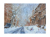 Snow  Remsen St Brooklyn NY  2012