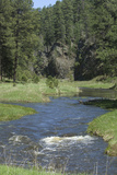 French Creek  Where Gold Was Discovered in the Black Hills  South Dakota