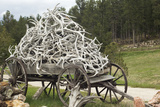 Wagonload of Elk and Deer Antlers  Custer  South Dakota