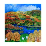 Terns over Rydal Water  2009
