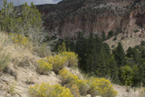 Frijoles Canyon  Bandelier National Monument  New Mexico