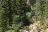 Rio Del Pueblo in the Sangre De Cristo Mountains  New Mexico