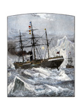 Steamships Caught in the Icefields of the North Atlantic  1880s