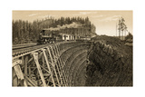 Island Railway Crossing Arbutus Canyon  British Columbia  1800s
