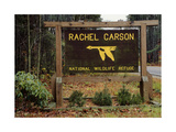 Rachel Carson National Refuge Entrance Sign  Wells  Maine