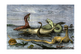 Dinosaurs of the Submerged Kansas Plains in Their Last Struggles  a 19th-Century Depiction