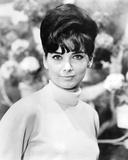 Suzanne Pleshette  The Ugly Dachshund (1966)