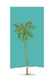 Totem Palm
