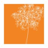 Blossom Pop Orange