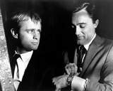 David McCallum  The Man from UNCLE (1964)