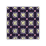 Moroccan Star Flower (Purple)