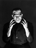 Frankenstein 1931 Directed by James Whale Boris Karloff
