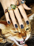 Cat and Rings