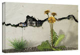 Cynthia Decker 'Between the Cracks' Gallery Wrapped Canvas