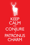 Keep Calm and Conjure a Patronus Charm Carry On Spoof Plastic Sign