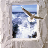 Dove Flying Toward Camera Through Plaster Frame with Ocean Waves in Background