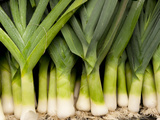 Close-up of Bunch of Leeks