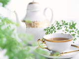 Tea Set with Green Leaves