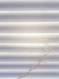 Bright Light Filtering Through Grey Curved Horizontal Slats with Delicate Branch And Flowers