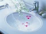 Close Up of White Porcelain Sink Bowl with Orchids Floating in Water