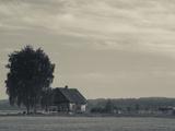 Farmhouse in a Field  Svente  Daugava River Valley  Latgale Region  Riga  Latvia
