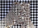 Cubist Zebras
