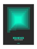 New Mexico Radiant Map 5