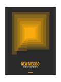 New Mexico Radiant Map 4