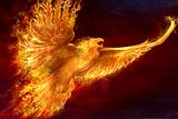 Phoenix Rising by Tom Wood Plastic Sign
