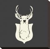 Harrison Deer