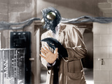 THE FLY  David Hedison  1958