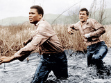 THE DEFIANT ONES  from left: Sidney Poitier  Tony Curtis  1958