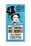 Brief Encounter  Celia Johnson on US poster art  1945