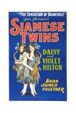 Daisy and Violet Hilton  1920