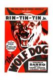 THE WOLF DOG  Rin Tin Tin Jr  1933