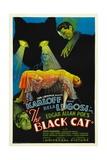 THE BLACK CAT  Boris Karloff  Harry Cording  Jacqueline Wells [Julie Bishop]  Bela Lugosi  1934