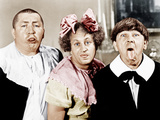ALL THE WORLD'S A STOOGE  from left: Curly Howard  Larry Fine  Moe Howard  1941