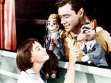 LILI  from left: Leslie Caron  Mel Ferrer  1953