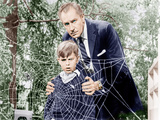The Fly  Charles Herbert  Vincent Price  1958