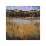 Salt Water Marsh I