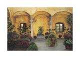 Patio Villa Toscana