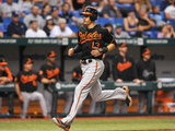 Sep 20  2013 - St Petersburg  Fl: Baltimore Orioles v Tampa Bay Rays