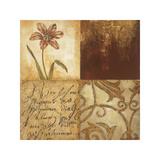 Tulip Manuscripts I