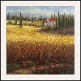 Tuscan Wheat