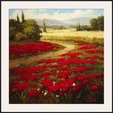 Red Poppy Trail