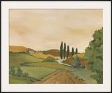 Sunny Tuscan Road