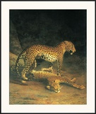 Two Leopards Playing